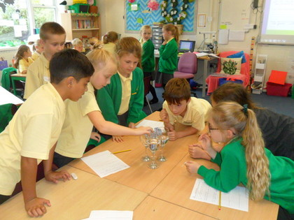 Year 4 T1 Science