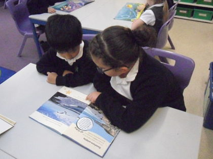 Year 1 T2 Sharing stories with Year 4 reading buddies