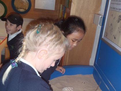 Year 3 T2 Pankhurst - Mummification at Maidstone Museum