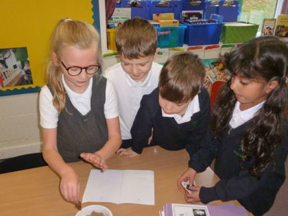 Year 3 T2 Pankhurst - Science Forces and Magnets
