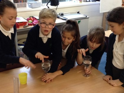 Year 4 T2 Newton - Science